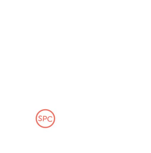 SPC Box Icon